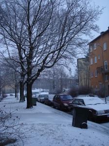 My snowy street